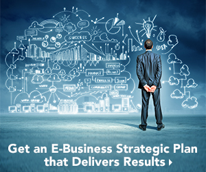 Develop your own E-Business strategic plan with the help of the COB Certified E-Business Manager Courses